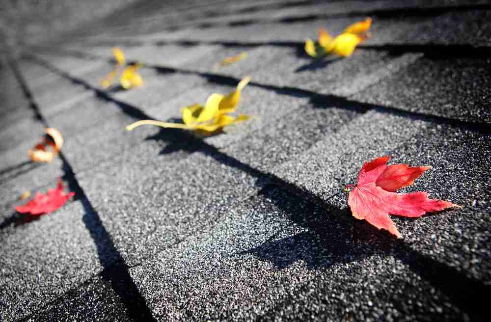 3 End-of-Summer Maintenance Tips For Your Roof