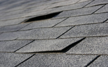 Is Your Roof Leaking? 5 Steps You Need to Take Immediately